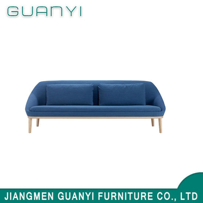 201 Fashion Soft Modern Blue 2 Seat Home Furniture Sofa for Living Room